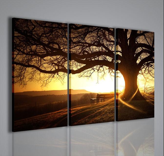 Quadri Moderni-Quadri di Natura e Paesaggi-Soft Tree  QUADRI MODERNI SU TELA