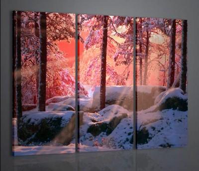 Quadri Moderni-Quadri di Natura e Paesaggi-Winter Landscape I