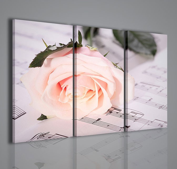 Quadri moderni quadri fiori e piante melody white rose for Capoletto moderno