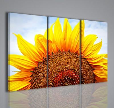 Quadri moderni quadri fiori e piante sunflower vii for Piante arredamento moderno