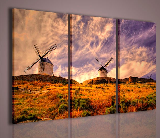 Quadri moderni quadri di natura e paesaggi mills quadri for Stampe quadri astratti