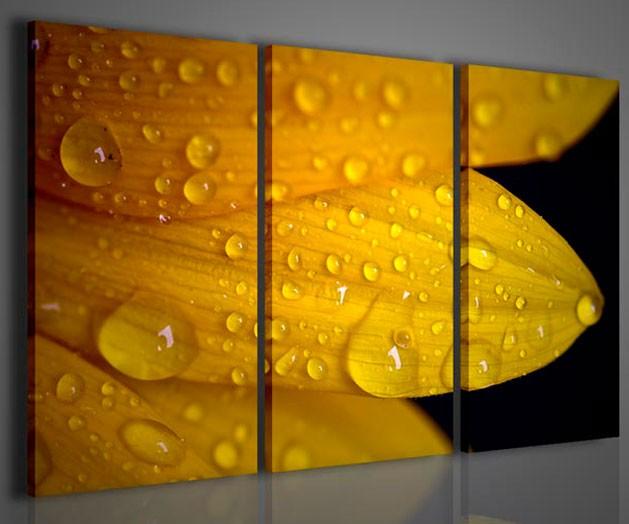 Quadri Moderni Per Ufficio : Quadri moderni quadri fiori e piante girasole i sunflower quadri