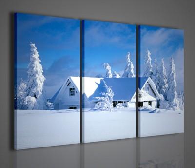 Quadri Moderni-Quadri di Natura e Paesaggi-Winter Landscape II