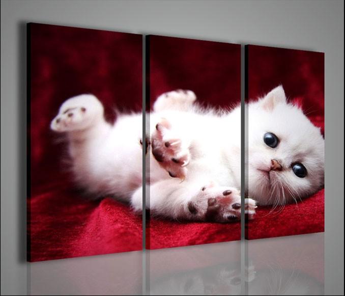 Quadri moderni quadri animali kitty quadri moderni su tela for Cerco quadri moderni