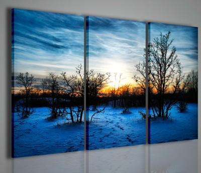 Quadri Moderni-Quadri di Natura e Paesaggi-Winter Scenary III