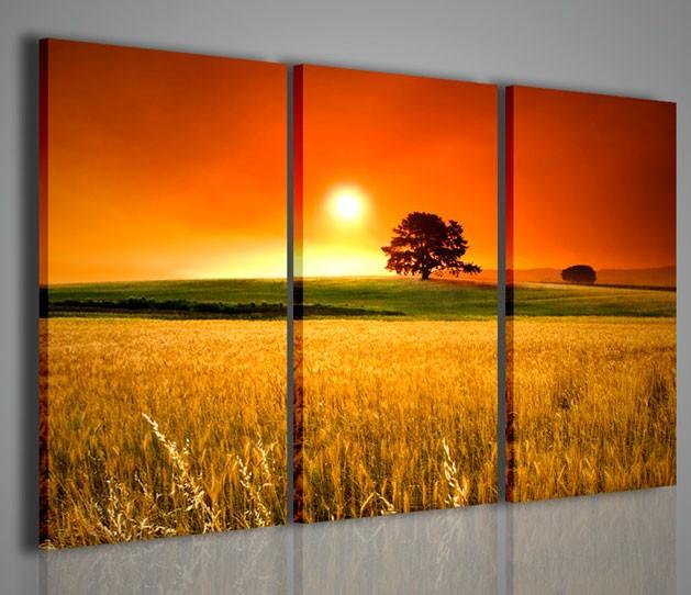 Quadri moderni quadri di natura e paesaggi lone tree at - Quadri moderni ikea ...