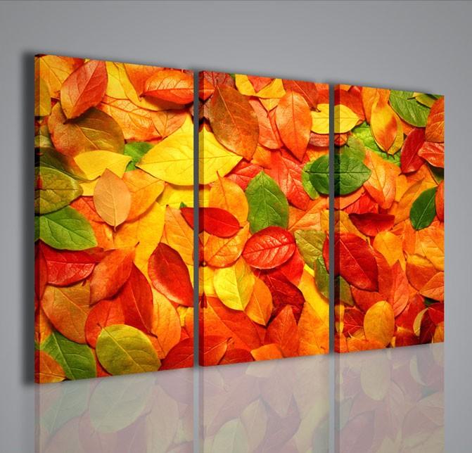 Quadri Moderni-Quadri Fiori e Piante-Multicolored Foliage   QUADRI ...