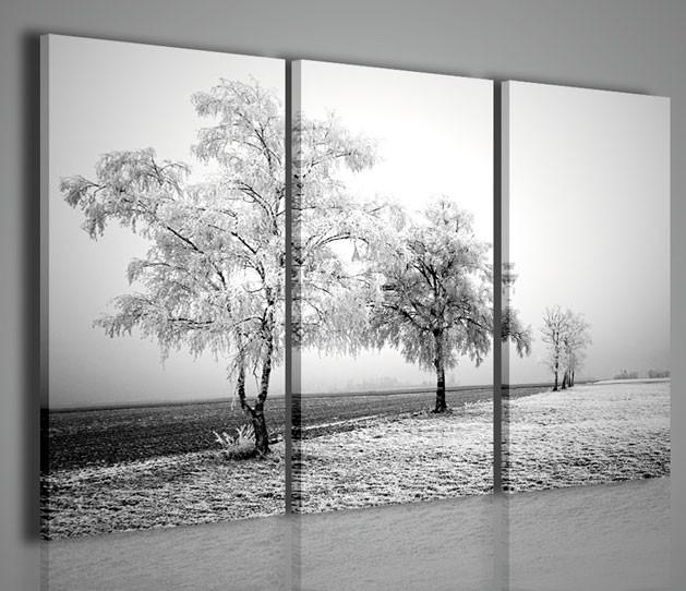 Quadri moderni quadri di natura e paesaggi frozen road - Quadri arredamento casa ...