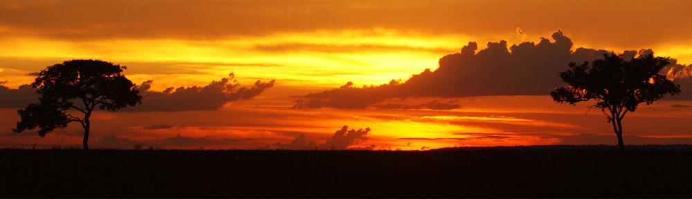 Quadri moderni paesaggio con cavalli al tramonto for Cavalli arredamento
